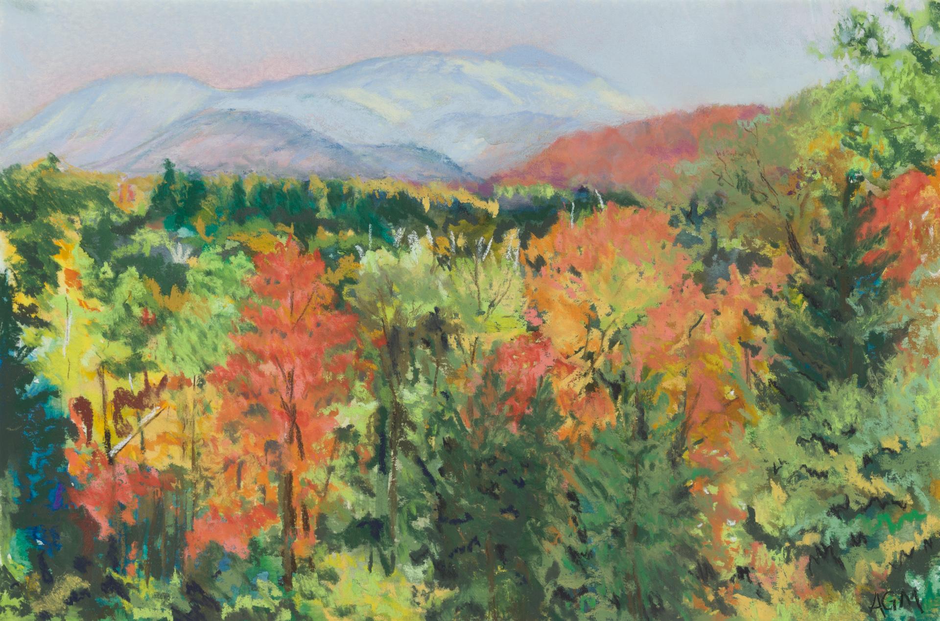 Vermont Hills LA11