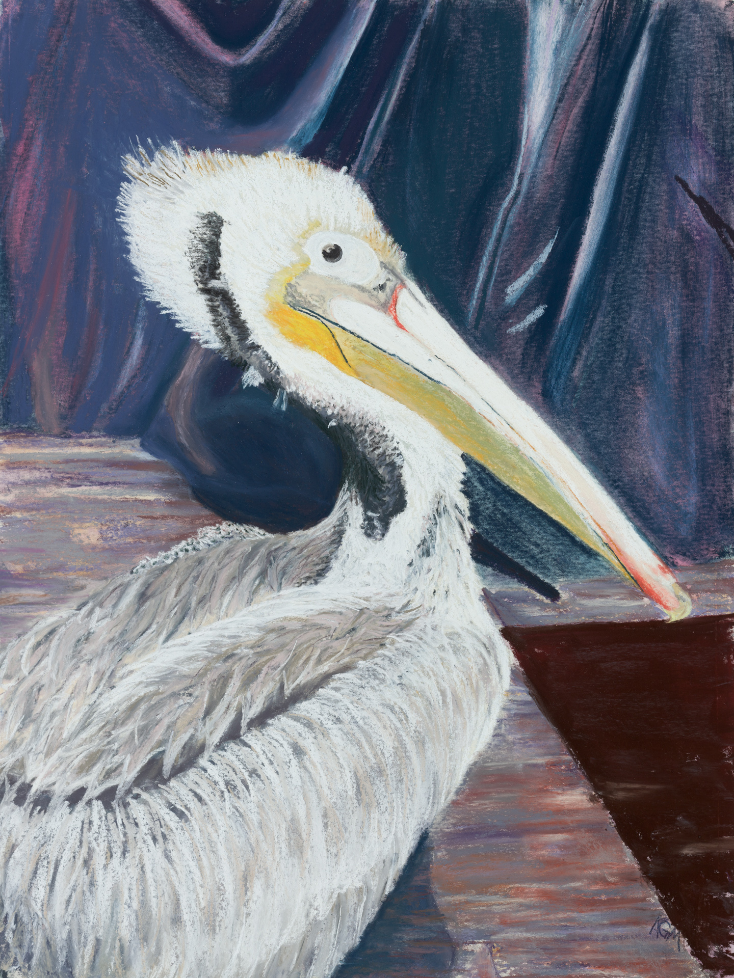 Ode to The Pelicans 08 - A11