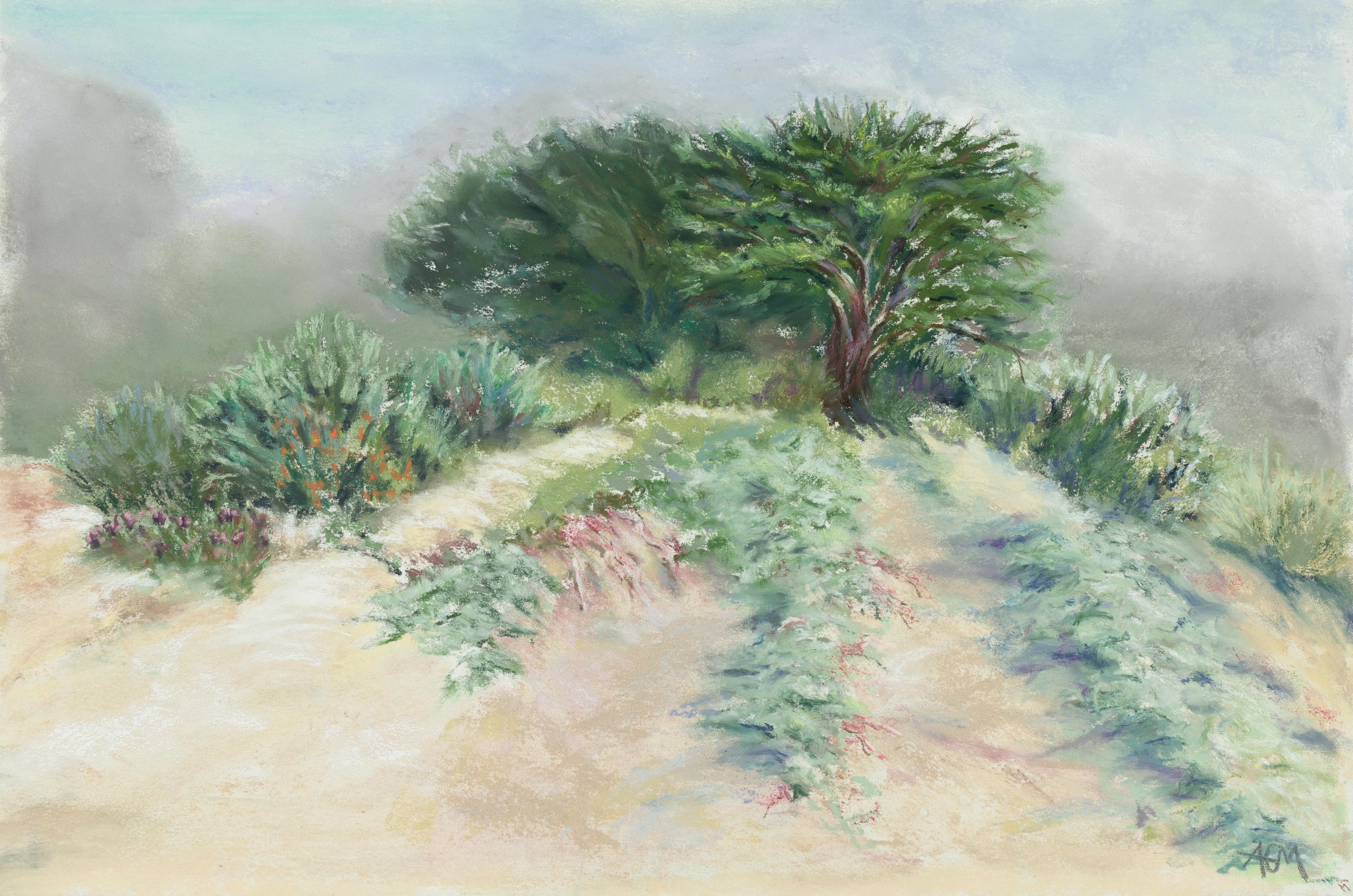 Misty Dunes