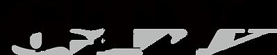 GTV_logo.png