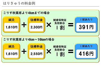 ホームページ用(はりきゅうの料金例)(2021年4月).jpg