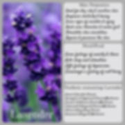 Lavender Infographic.jpg