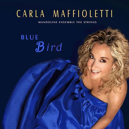 BLUE BIRD - CARLA MAFFIOLETTI
