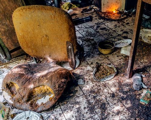 Kitchen Chair and Dead Kitten