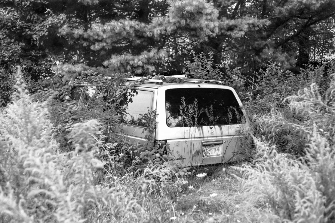 Wagon Rear Under Weeds