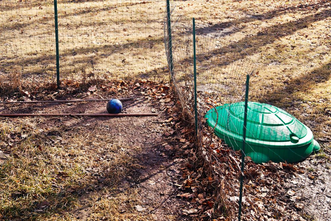 Fenced-in Yard