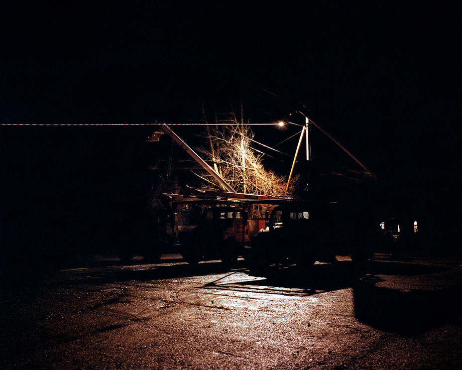 Bucklet Cranes at Night