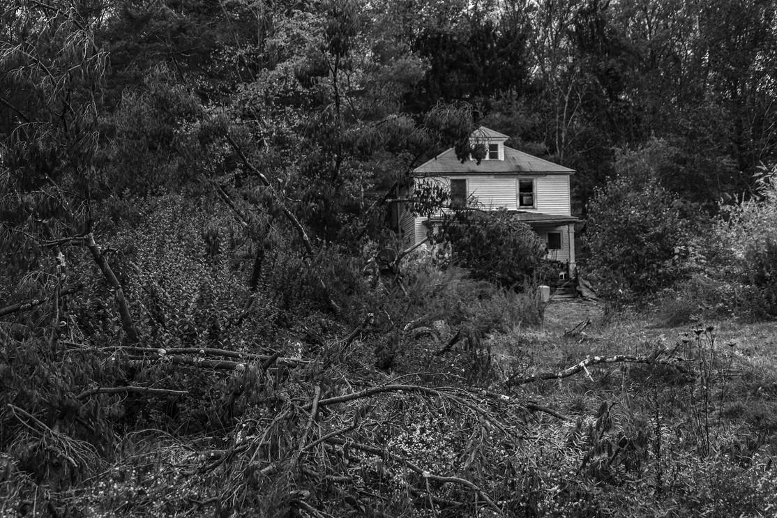 Fallen Tree in Front of House