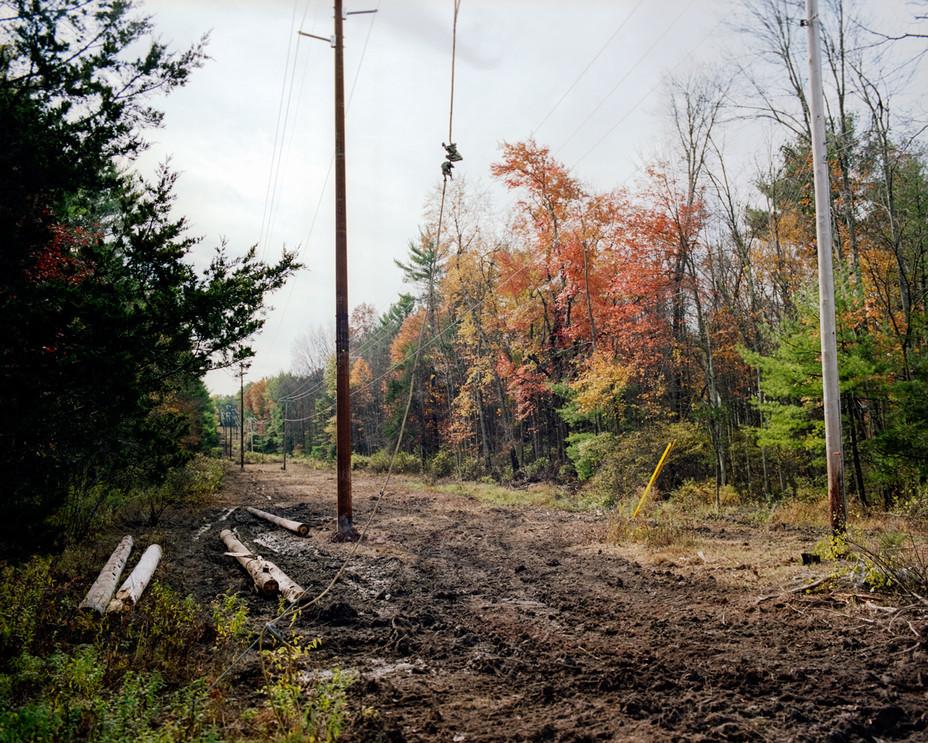 New Powerline Poles
