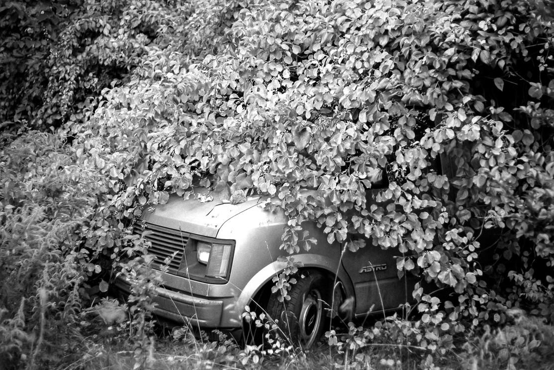 Astro Van Under Tree