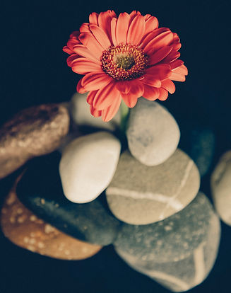 flower and stone.jpg
