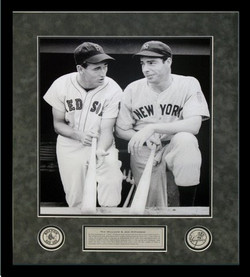 Ted Williams and Joe D