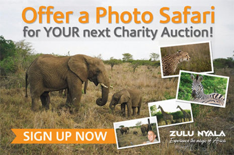 Zulu Nyala Fundraising Trips