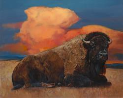 BuffaloSky