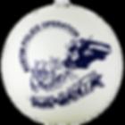 northlight-christmas-ornaments-32911678-