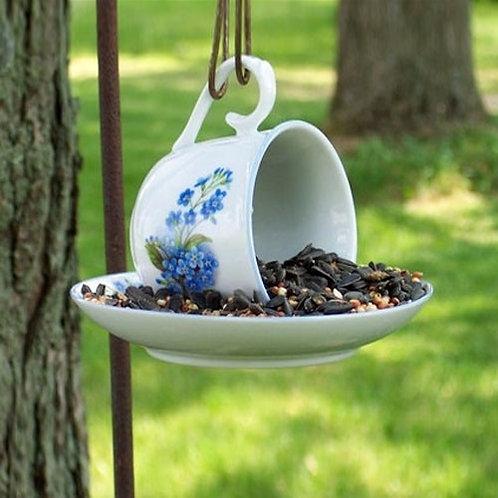 tea cup bird feeder session