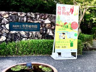 お隣の高知県に行って参りました。