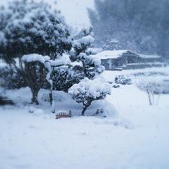 雪の城川・かまぼこ板の絵の町。