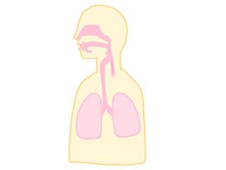 冷えをやわらげる「鼻腔care」