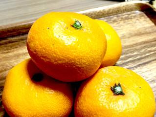 オレンジの季節🍊