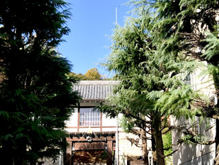 松山城の東と南