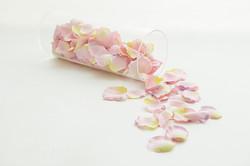 花びら_ピンク