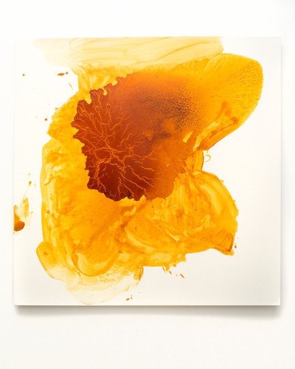 Indian Yellow Study no. 9 (A Shoe, a Brick, a Shot Glass)