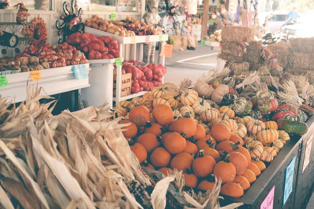 Fall Festival Chamomile Pumpkin Spice Kombucha  I  Pint Fermin  I  San Pedro
