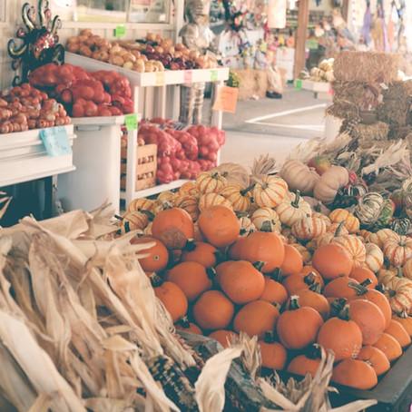 Que manger à l'automne?