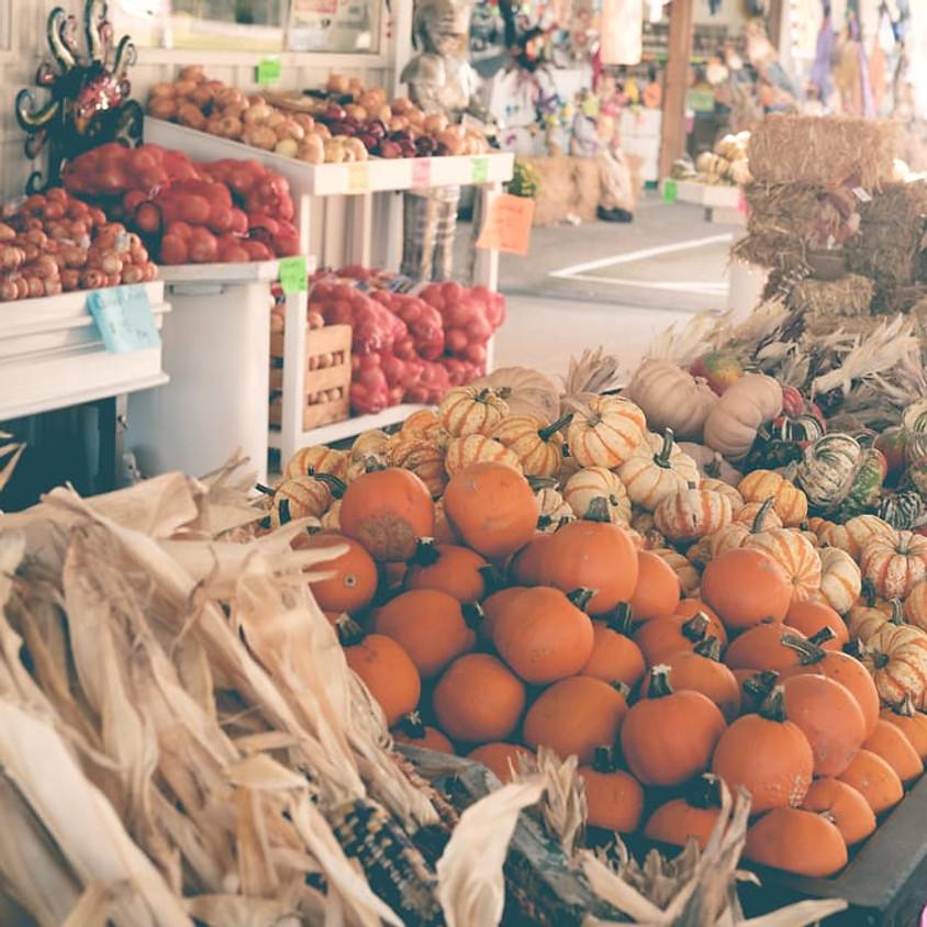 Farm to Fork Thanksgiving Tour