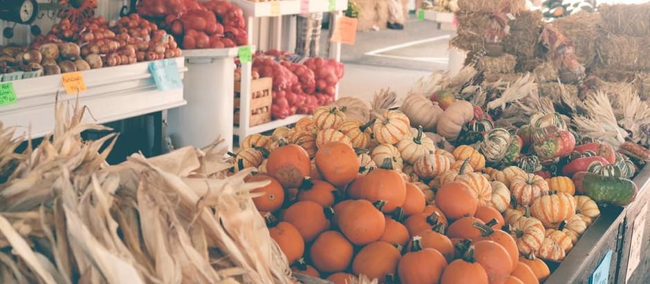 Falling in Love with the Fall Season