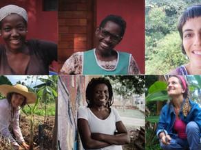 Encontro virtual: as diferentes visões de mulheres que atuam nas áreas de agroecologia e cultura