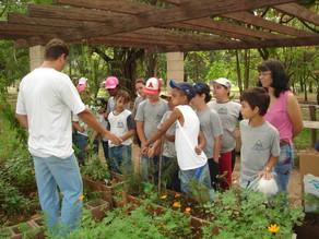 Núcleo de Educação Ambiental de Piracicaba comemora 25 anos em 2021
