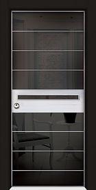 דלתות כניסה בשילוב חיפוי זכוכית