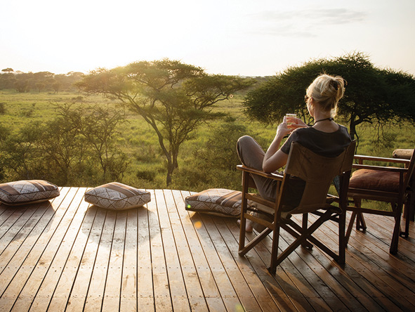 Your Dream Luxury Safari Starts with us, Here