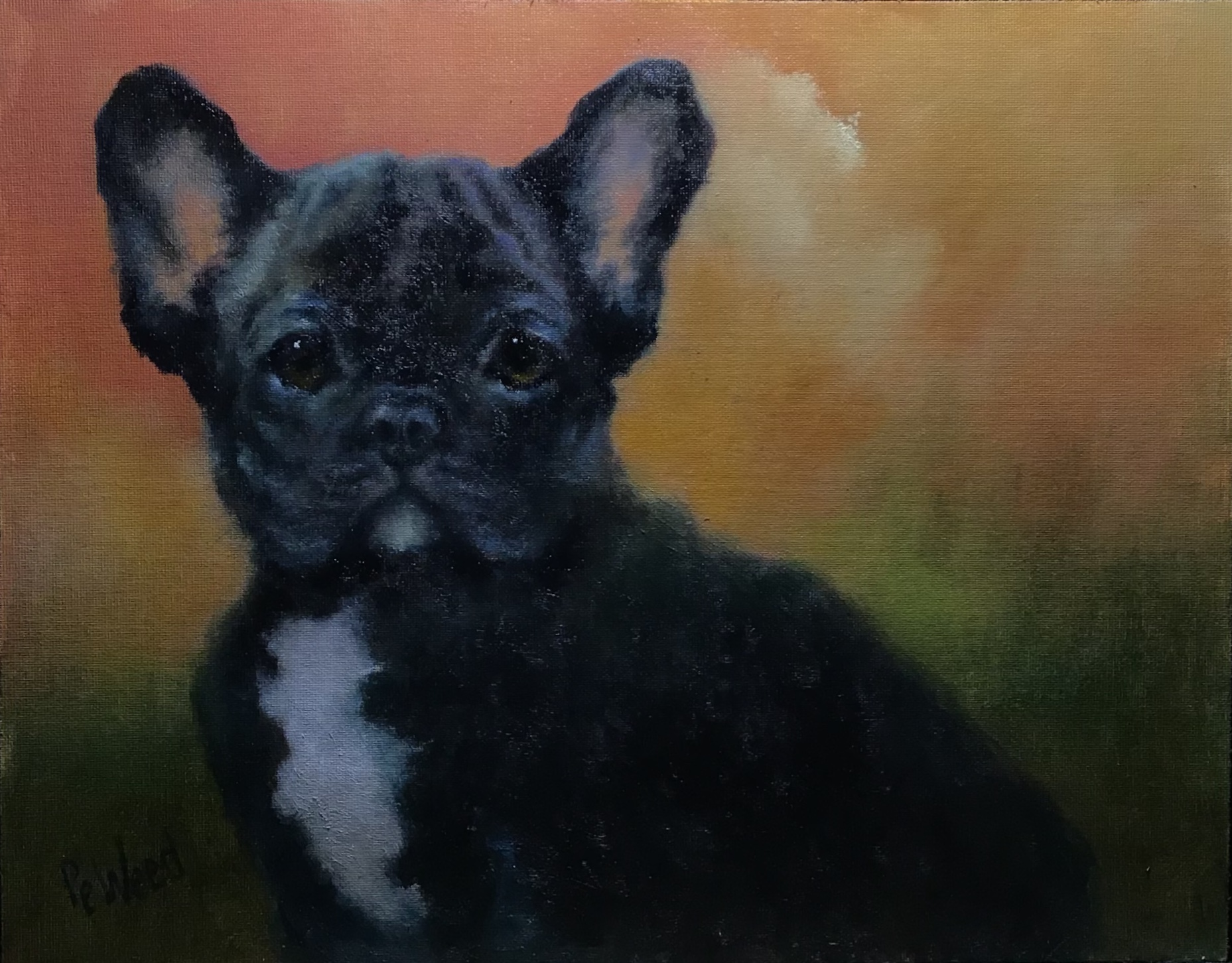 Weed, Peggy-The Black Frenchie