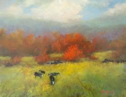 Garity, Jill-Cow Country