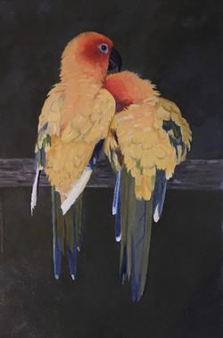 Thompson, Dana Lee-Lovebirds