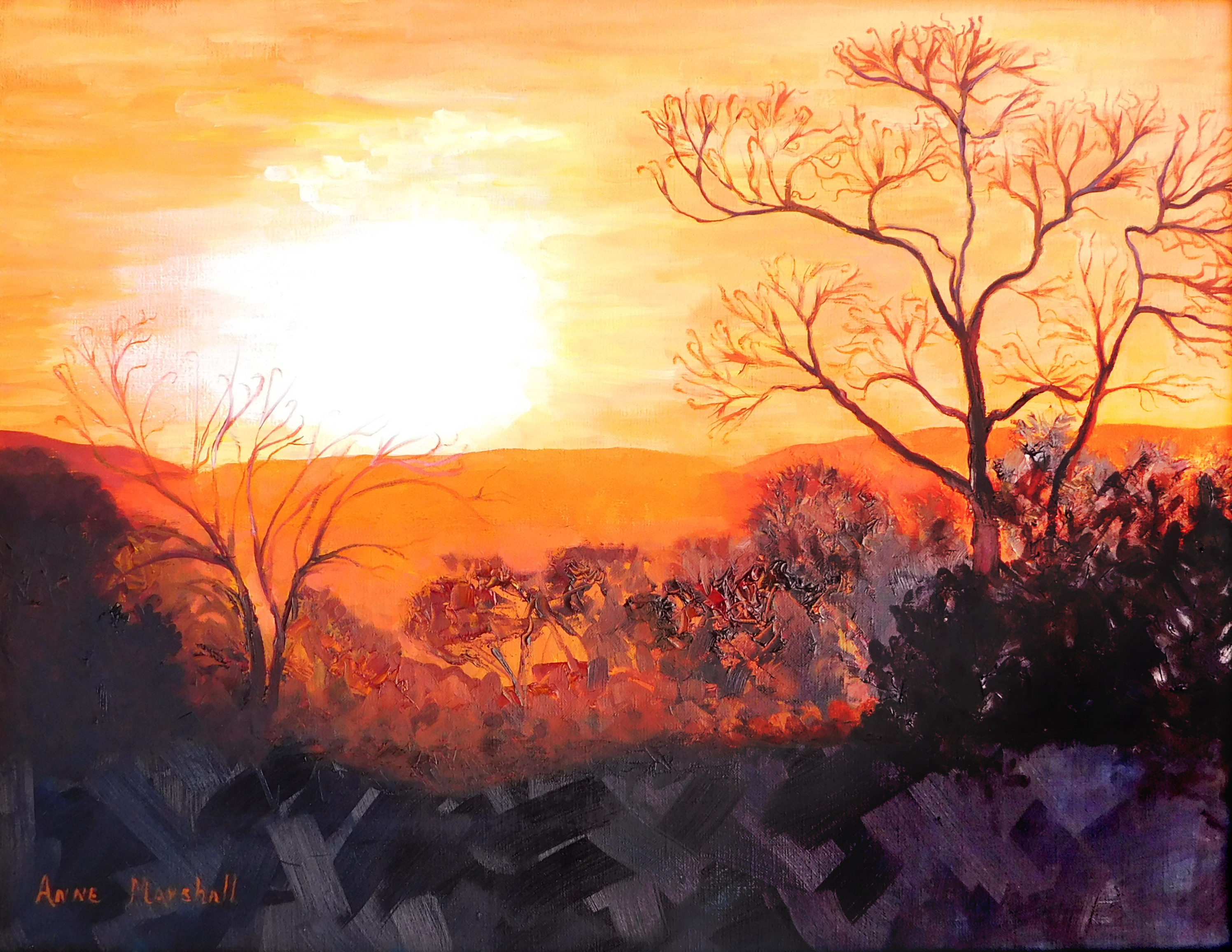 Block, Anne-Sunrise Loudoun
