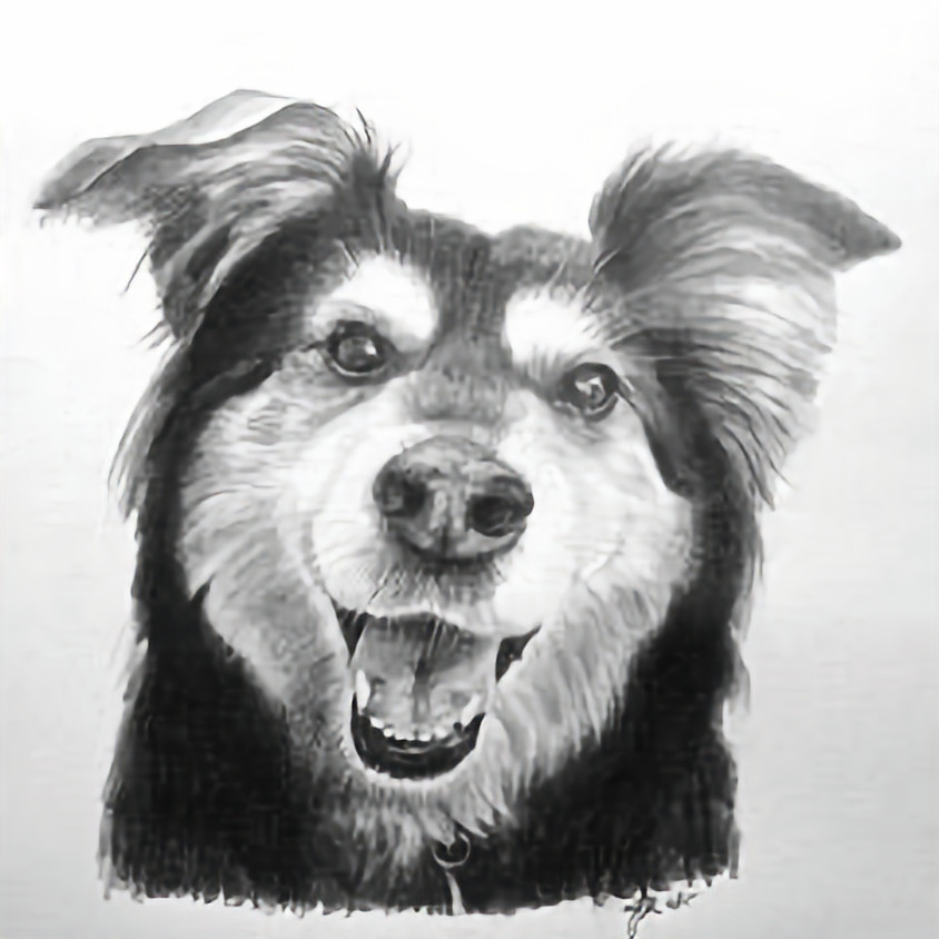 Session 4: Figure and Animal Drawing with Steve Myles - FREE!