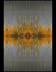 Kelly Larr Equinox (A Reflection Reflect