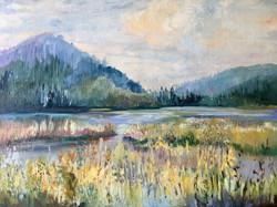Schneider, Debbie-Puffer Pond