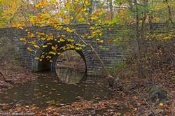 Salmon, Ron-Plum Run Bridge