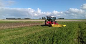 Vlinderbloemige Luzerne als eiwitbron voor ZUCO Zuivel, bodemverbeteraar en ultieme regiokringloop