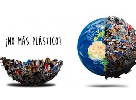 Consumimos a la semana cinco gramos de plástico o lo equivalente a una tarjeta de crédito.
