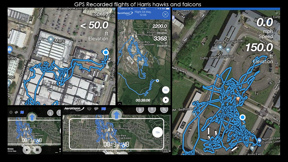 GPS flight photo montage.jpg