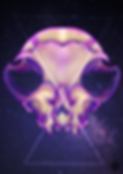 Skull2020.png