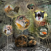 Diane-Simoneau-Romiti_A Cat's Dreams.jpg