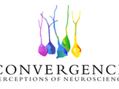 Art and Science connect - The Convergence Initiative