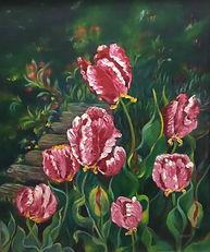 Deanne Habeeb_Parrot Tulips.jpeg